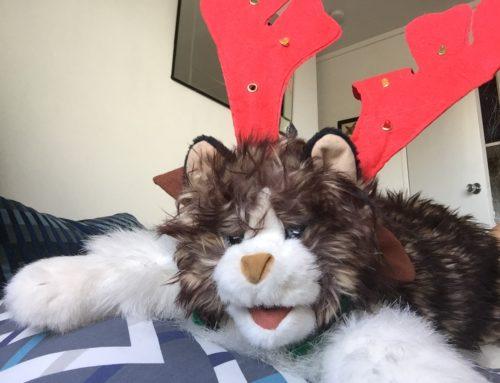 Calbert the Cat: Jingle Bells